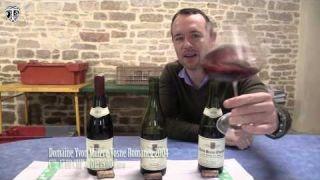 TLTV #90 Deutsch: Burgundy Yvon Millère (Micro-Weingut) Weinverkostung