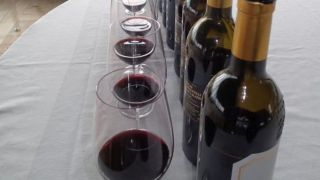 Wine Events and Travel